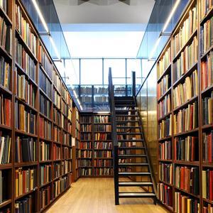 Библиотеки Радовицкого